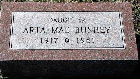 BUSHEY, ARTA MAE - Richland County, Ohio | ARTA MAE BUSHEY - Ohio Gravestone Photos