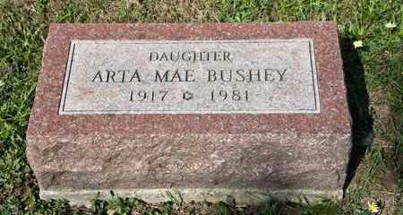 BUSHEY, ARTA MAE - Richland County, Ohio   ARTA MAE BUSHEY - Ohio Gravestone Photos