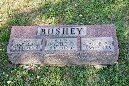 BUSHEY, MYRTLE F - Richland County, Ohio | MYRTLE F BUSHEY - Ohio Gravestone Photos
