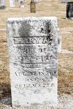 BUSHEY, MARY A - Richland County, Ohio   MARY A BUSHEY - Ohio Gravestone Photos