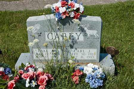 CAREY, OVAL A - Richland County, Ohio | OVAL A CAREY - Ohio Gravestone Photos