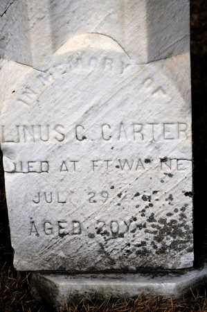 CARTER, LINUS C - Richland County, Ohio | LINUS C CARTER - Ohio Gravestone Photos