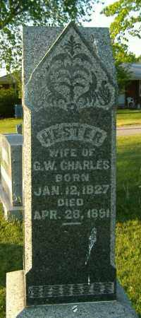 YOUNG CHARLES, HESTER - Richland County, Ohio | HESTER YOUNG CHARLES - Ohio Gravestone Photos