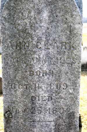 CLARK, ANN - Richland County, Ohio   ANN CLARK - Ohio Gravestone Photos