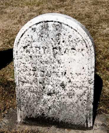 CLARK, MARY - Richland County, Ohio | MARY CLARK - Ohio Gravestone Photos