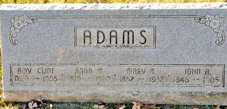 CLINE, AMY - Richland County, Ohio | AMY CLINE - Ohio Gravestone Photos