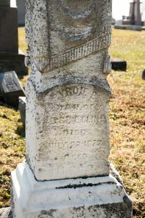 CLINE, BYRDIE E - Richland County, Ohio | BYRDIE E CLINE - Ohio Gravestone Photos