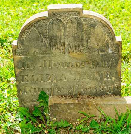 CLINE, ELIZA JANE - Richland County, Ohio | ELIZA JANE CLINE - Ohio Gravestone Photos
