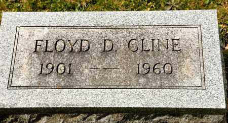CLINE, FLOYD D - Richland County, Ohio | FLOYD D CLINE - Ohio Gravestone Photos