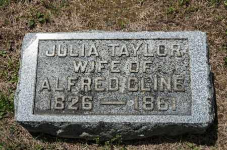 CLINE, JULIA - Richland County, Ohio | JULIA CLINE - Ohio Gravestone Photos
