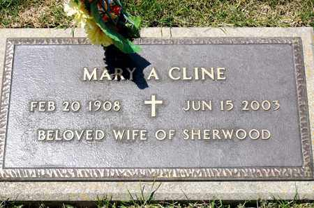 CLINE, MARY A - Richland County, Ohio | MARY A CLINE - Ohio Gravestone Photos