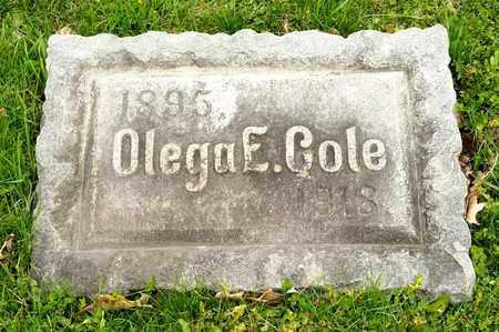 COLE, OLEGA E - Richland County, Ohio | OLEGA E COLE - Ohio Gravestone Photos