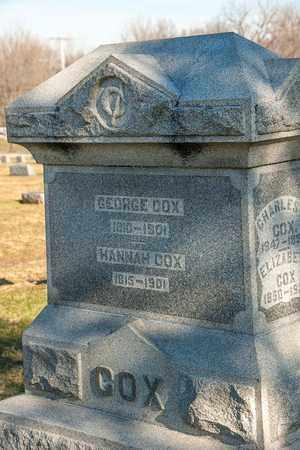 COX, HANNAH - Richland County, Ohio | HANNAH COX - Ohio Gravestone Photos