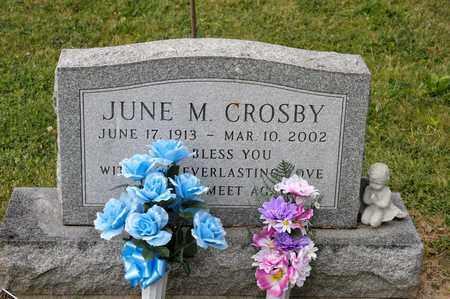 CROSBY, JUNE M - Richland County, Ohio   JUNE M CROSBY - Ohio Gravestone Photos