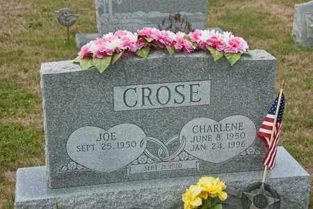 CROSE, CHARLENE - Richland County, Ohio | CHARLENE CROSE - Ohio Gravestone Photos