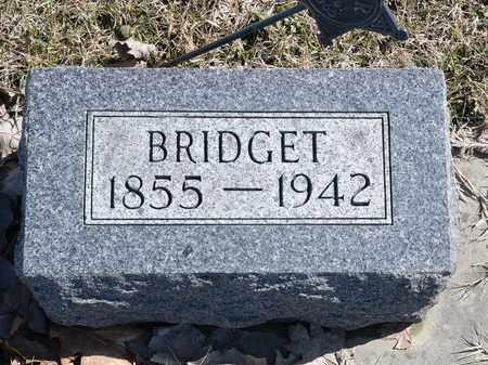 CURRAN, BRIDGET - Richland County, Ohio | BRIDGET CURRAN - Ohio Gravestone Photos