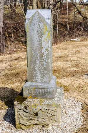ARTZ DAUP, CATHARINE - Richland County, Ohio | CATHARINE ARTZ DAUP - Ohio Gravestone Photos