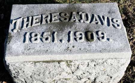 DAVIS, THERESA - Richland County, Ohio | THERESA DAVIS - Ohio Gravestone Photos