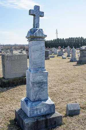 DELANEY, DANNIE - Richland County, Ohio   DANNIE DELANEY - Ohio Gravestone Photos