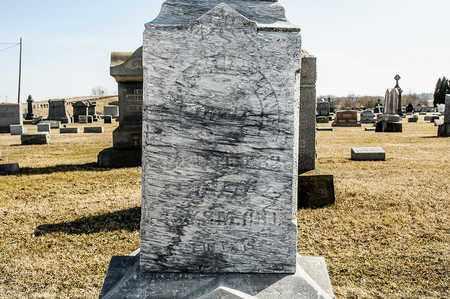 DELANEY, WILLIAM - Richland County, Ohio | WILLIAM DELANEY - Ohio Gravestone Photos