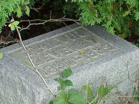 DEVENEY, C. ALVIN - Richland County, Ohio | C. ALVIN DEVENEY - Ohio Gravestone Photos