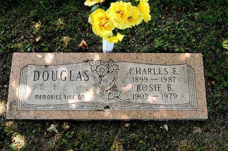 DOUGLAS, CHARLES E - Richland County, Ohio   CHARLES E DOUGLAS - Ohio Gravestone Photos