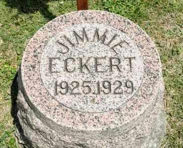 ECKERT, JIMMIE - Richland County, Ohio | JIMMIE ECKERT - Ohio Gravestone Photos