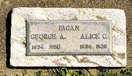FAGAN, ALICE - Richland County, Ohio | ALICE FAGAN - Ohio Gravestone Photos