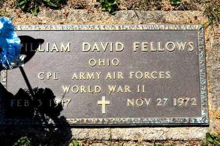 FELLOWS, WILLIAM DAVID - Richland County, Ohio | WILLIAM DAVID FELLOWS - Ohio Gravestone Photos