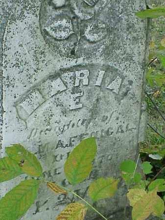 FENICAL, MARIA E. - Richland County, Ohio | MARIA E. FENICAL - Ohio Gravestone Photos