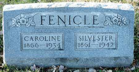 FENICLE, SILVESTER - Richland County, Ohio | SILVESTER FENICLE - Ohio Gravestone Photos