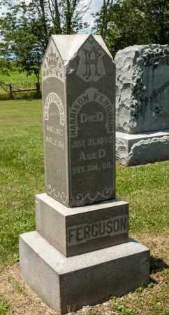 FERGUSON, MARY - Richland County, Ohio | MARY FERGUSON - Ohio Gravestone Photos
