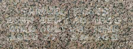 FICKES, SAMUEL - Richland County, Ohio | SAMUEL FICKES - Ohio Gravestone Photos