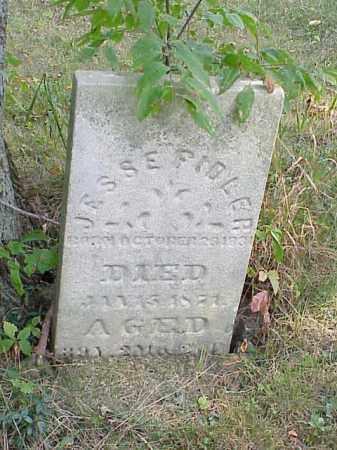 FIDLER, JESSE - Richland County, Ohio   JESSE FIDLER - Ohio Gravestone Photos
