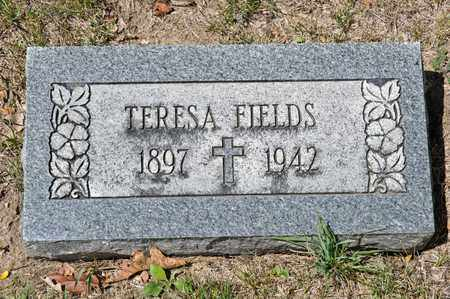 FIELDS, TERESA - Richland County, Ohio | TERESA FIELDS - Ohio Gravestone Photos