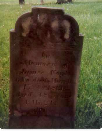 FORD, JAMES - Richland County, Ohio   JAMES FORD - Ohio Gravestone Photos