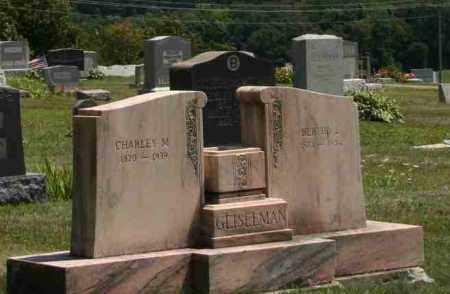 GEISELMAN, BERTHA - Richland County, Ohio | BERTHA GEISELMAN - Ohio Gravestone Photos