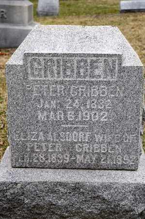 ALSDORF GRIBBEN, ELIZA - Richland County, Ohio | ELIZA ALSDORF GRIBBEN - Ohio Gravestone Photos