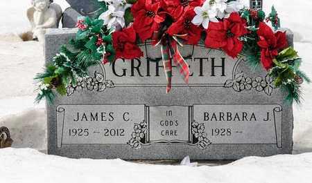 GRIFFETH, JAMES C - Richland County, Ohio   JAMES C GRIFFETH - Ohio Gravestone Photos