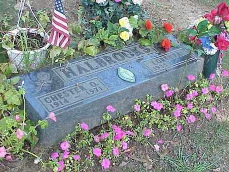 HALBROOKS, CHESTER O. - Richland County, Ohio | CHESTER O. HALBROOKS - Ohio Gravestone Photos
