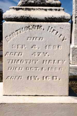 HALEY, TIMOTHY - Richland County, Ohio | TIMOTHY HALEY - Ohio Gravestone Photos