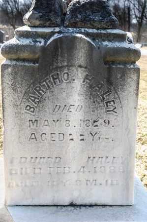 HALEY, EDWARD - Richland County, Ohio   EDWARD HALEY - Ohio Gravestone Photos
