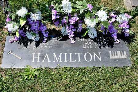 HAMILTON, ODELL GENEVA - Richland County, Ohio | ODELL GENEVA HAMILTON - Ohio Gravestone Photos