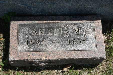 HARTER, AMELIA M - Richland County, Ohio   AMELIA M HARTER - Ohio Gravestone Photos