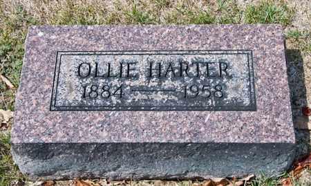 HARTER, OLLIE - Richland County, Ohio | OLLIE HARTER - Ohio Gravestone Photos