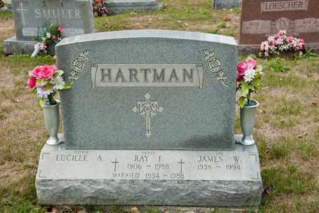 HARTMAN, RAY F - Richland County, Ohio | RAY F HARTMAN - Ohio Gravestone Photos