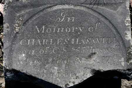 HASWELL, CHARLES - Richland County, Ohio | CHARLES HASWELL - Ohio Gravestone Photos