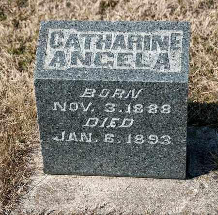 HAYES, CATHARINE ANGELA - Richland County, Ohio | CATHARINE ANGELA HAYES - Ohio Gravestone Photos