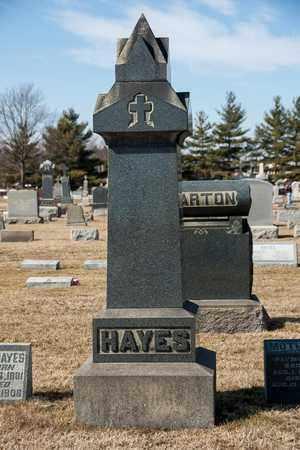 HAYES, F PAUL - Richland County, Ohio | F PAUL HAYES - Ohio Gravestone Photos