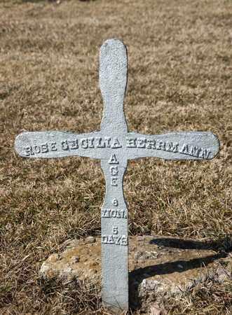 HERRMANN, ROSE CECILIA - Richland County, Ohio | ROSE CECILIA HERRMANN - Ohio Gravestone Photos